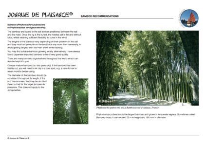 Bamboo recommendations