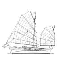 16.5m Modern sailing junk
